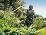 Покос травы,  в Минске,  Минском районе